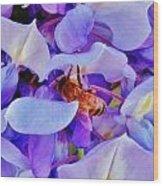 Honey Bee Cling Wood Print