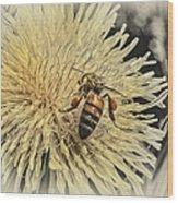 Honey Bee Meets Dandy Lion Wood Print