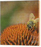 Honey Bee On Flower Wood Print by Dan Friend