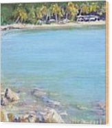 Honey Moon Beach Wood Print