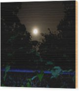 Honey Moon In New Orleans On Friday The 13th Wood Print by Louis Maistros