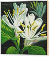 Honey Suckle Blossoms Wood Print