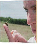 Honeybee Radar Tagging Wood Print