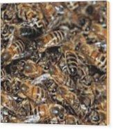 Honeybee Swarm Wood Print