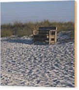Honeymoon Island Beach Wood Print