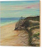 Honeymoon Island Florida Wood Print