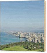 Honolulu From Atop Diamond Head State Wood Print