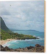 Honolulu Hi 10 Wood Print