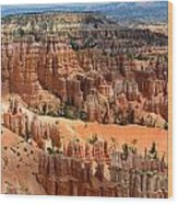 Hoodoo Magic Wood Print