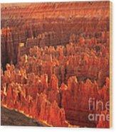 Hoodoos Basin Wood Print