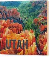 Hoodoos In Bryce Canyon Utah Wood Print