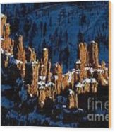 Hoodoos In Shadows Bryce Canyon National Park Utah Wood Print