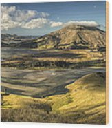 Hoopers Inlet And Cape Saunders New Wood Print