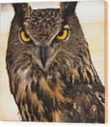 Hoot Wood Print by Annette Hugen