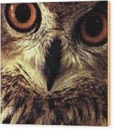 Hoot Owl Wood Print