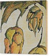 Hop Harvest Wood Print by Alexandra Ortiz de Fargher