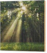 Hope Eternal Wood Print by Andrew Soundarajan