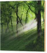 Hope Lights Eternal - A Tranquil Moments Landscape Wood Print