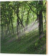 Hope Lights Eternal - Blue Ridge Parkway I Wood Print
