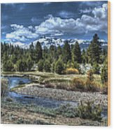 Hope Valley Wildlife Area 2 Wood Print