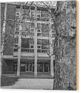 Hopkins Hall Black And White Wood Print