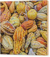 Hordes Of Gourds Wood Print
