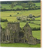Hore Abbey Ireland Wood Print by Dick Wood