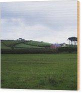 Horizon Dingle Ireland Wood Print