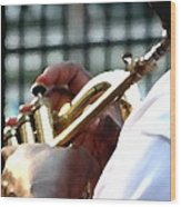 Horn Player Pk 0071 Wood Print