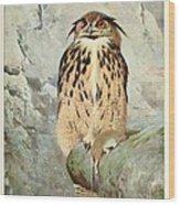 Horned Owl Wood Print