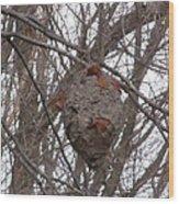 Hornets Nest East Wood Print