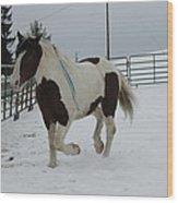 Horse 03 Wood Print