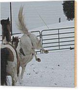 Horse 13 Wood Print