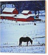 Horse Alone Wood Print