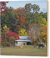 Horse And Barn In The Fall 3 Wood Print