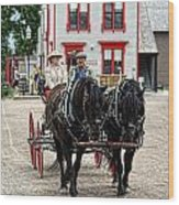 Horse And Buggy Sc3643-13 Wood Print