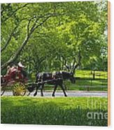 Horse And Carriage Central Park Wood Print