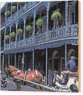 Horse And Carriage In New Orleans Wood Print