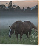 Horse And Fog Wood Print