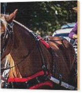 Horse And Rider Wood Print