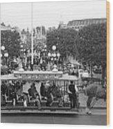 Horse And Trolley Main Street Disneyland Bw Wood Print