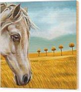 Horse At Yellow Paddy Field Wood Print