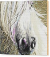 Horse Blowing In The Wind Wood Print