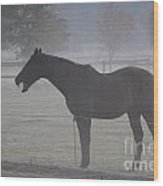 Horse Body Language  Wood Print