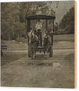Horse Carriage Tour Wood Print