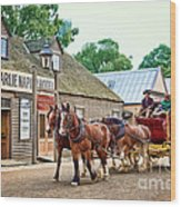 Horse Carriage Wood Print