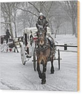 Horse Carriages In Snowy Park Wood Print
