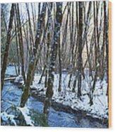 Horse Creek No. 2 Wood Print