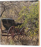 Horse-drawn Buggy Wood Print by Kathleen Bishop
