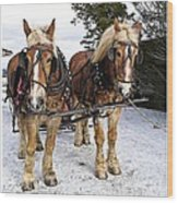 Horse Drawn Sleigh Wood Print by Edward Fielding